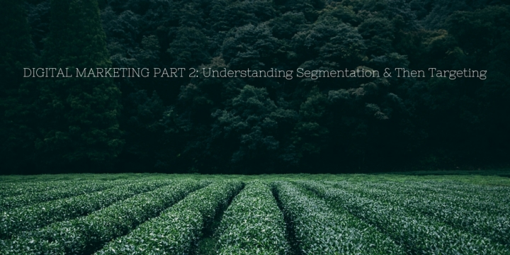 Digital Marketing Part 2 : Understanding Segmentation & Then Targeting